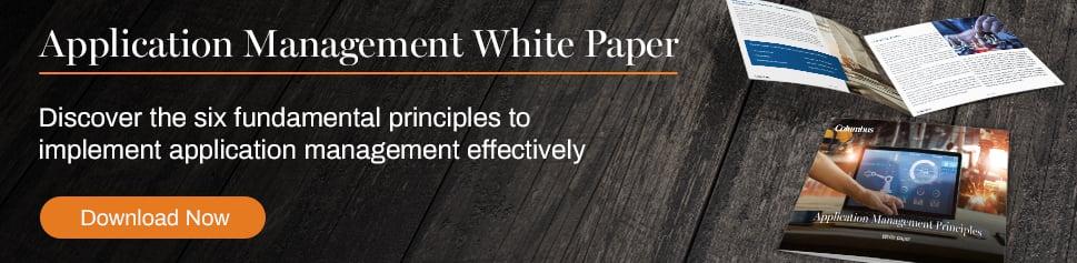 Application management principles white paper_Columbus UK