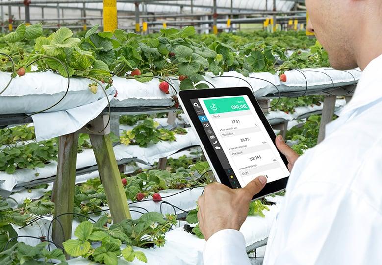 Food industry ERP