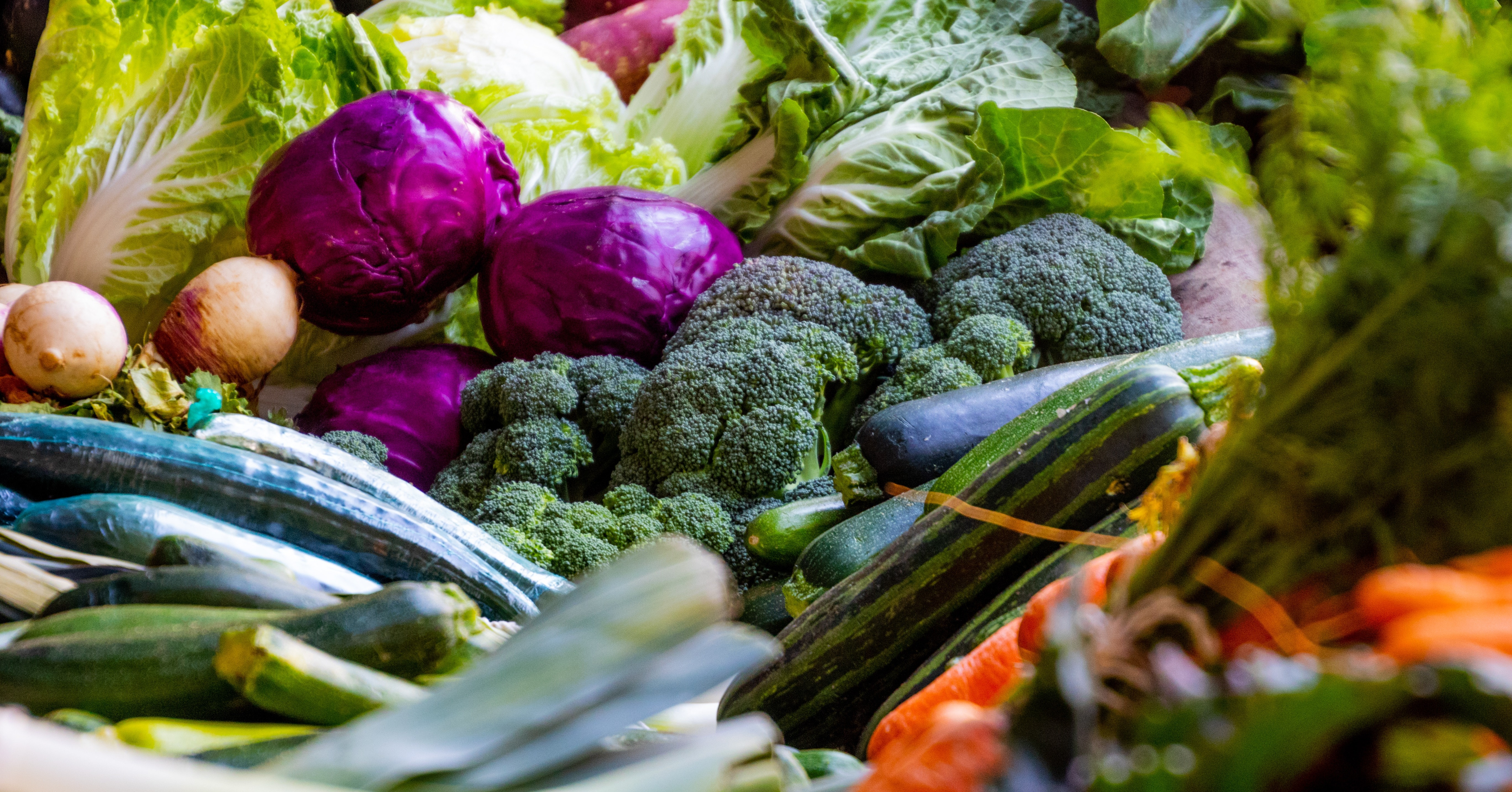 The impact of food waste and how to reduce it