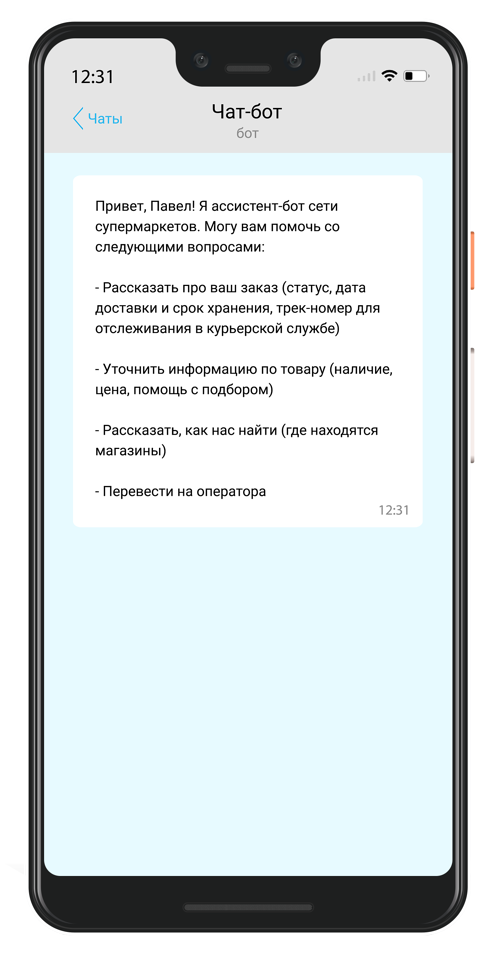 chat-bot_page_1