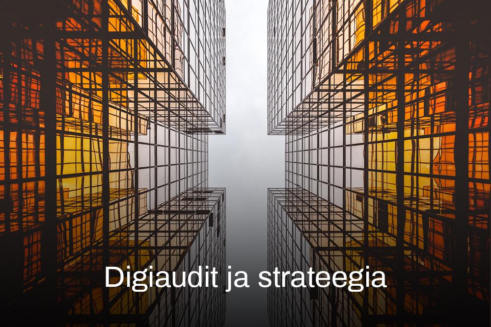 Digiaudit ja strateegia