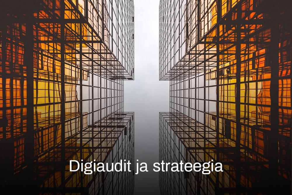 Digiaudit ja strateegia-archivo